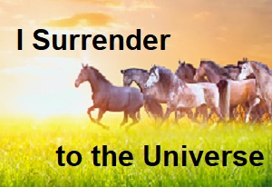 I surrender to the universe